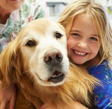 כלבנות טיפולית, טיפול בעזרת כלבים יוצרים קשר מיוחד בין המטופל, הכלב והמטפל