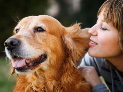 מאלף כלבים חייב תקשורת טובה עם הכלב