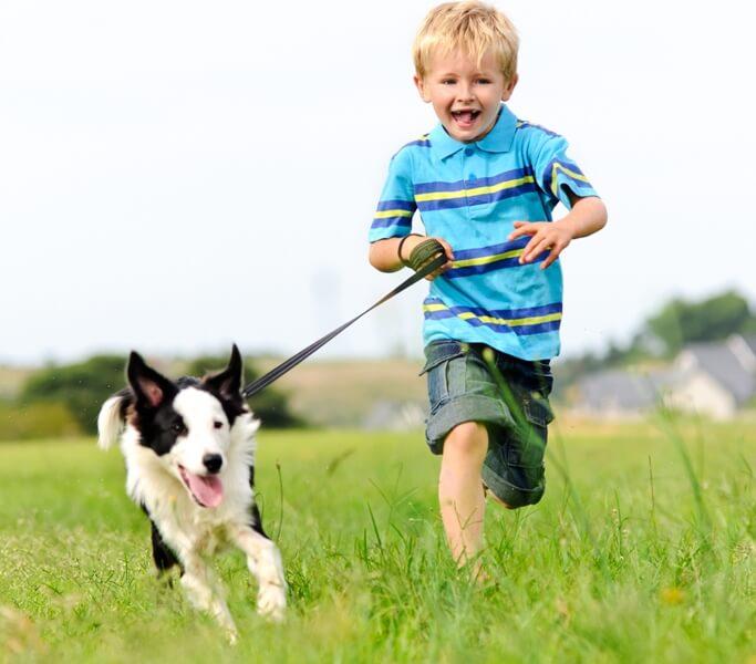 ריצה והתעמלות לילדים עם כלבים טובה לבריאות