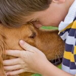 ילד וכלב, תרפיה בבעלי חיים