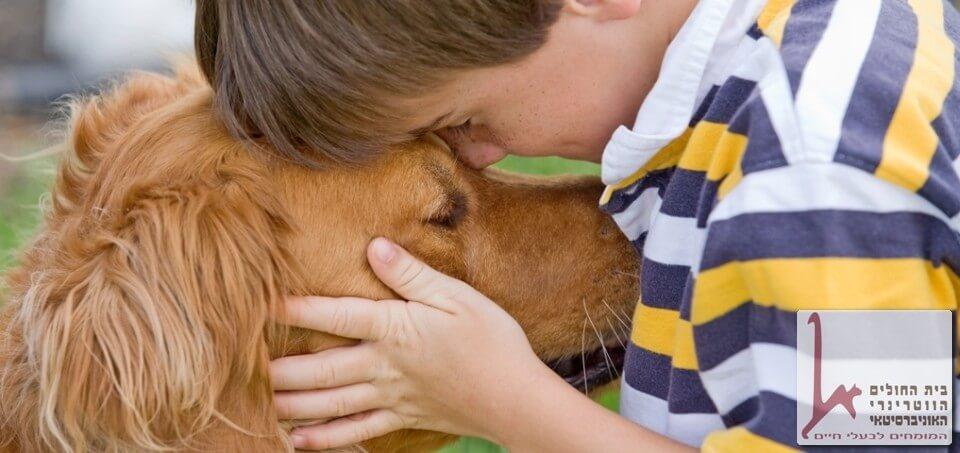 תרפיה באמצעות בעלי חיים וכלבים - קורס כלבנות טיפולית