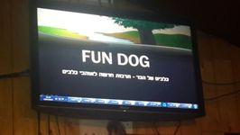 פאן דוג, עולם הכלבים, מפגשי תרבות, הרצאה מרתק,
