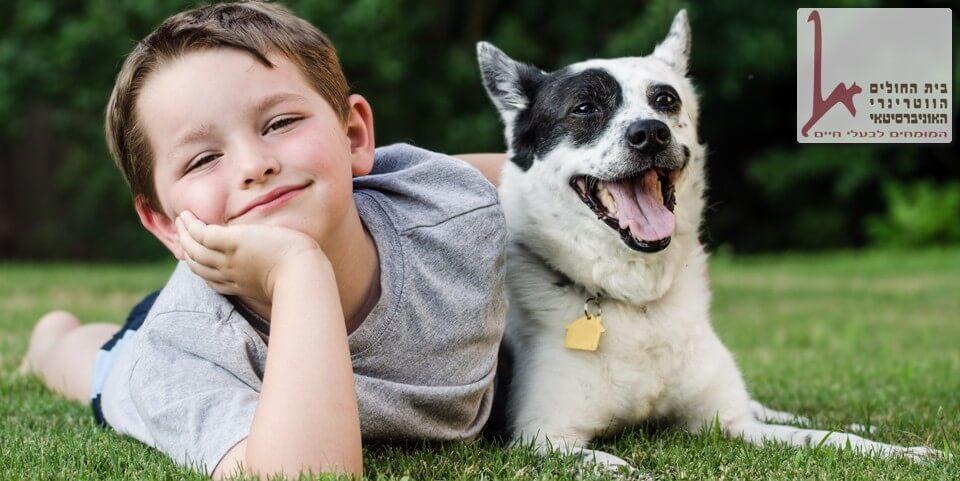 טיפול באמצעות בעלי חיים תחום מתפתח שיש ללמוד אותו כל הזמן מחדש