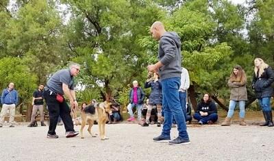 סמינר טכניקות אילוף כלבים מתקדמות בבית הספר לאילוף כלבים מאי דוג קולג'