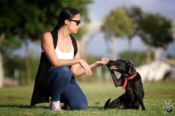 סטודנטית יושבת בפארק עם כלב שחור ומחזיקה לו את הרגל