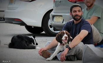 תמונה משיעור אילוף כלבים מעשי. סטודנט יושב עם הכלב ליד רכב