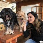 זוג כלבים, טיפול בעזרת כלבים
