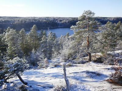נוף עם שלג בפינלנד ליד הלסינקי