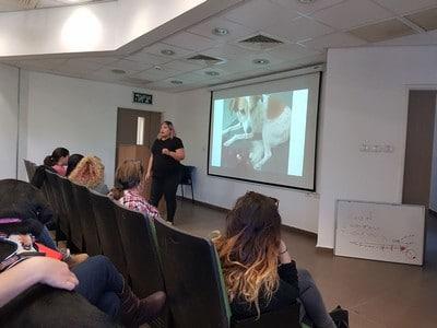 הרצאה על רפואת כלבים אלטרנטיבית בנוסף לשיעורי אילוף כלבים