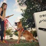 מאלפת כלבים עם כלב. כיתוב: הצעות עבודה לבוגרים