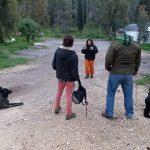 מאמן כלבי הגנה מלמד תושבים עם כלבים