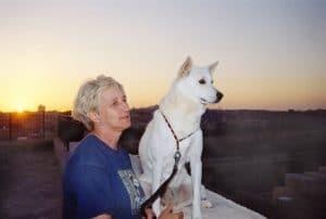 כלב כנעני ומירלה ברקע שקיעה