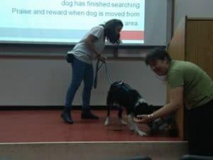 מדריכה ותלמידה בסדנת כלבים