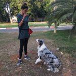 מאלפת כלבים עם כלב בפארק