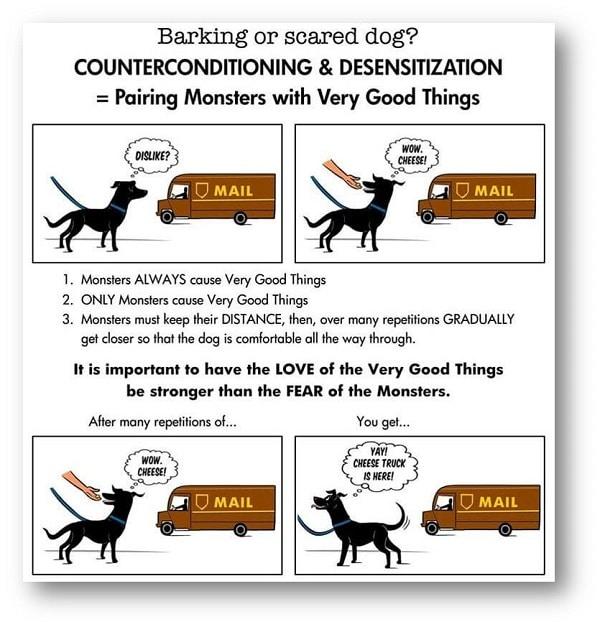 תרשים הרגלת גור כלבים לגורם שמפחיד אותו (אילוף כלבים)