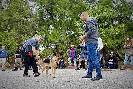 סמינר מאלפי כלבים עם קבוצת סטודנטים