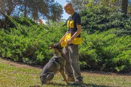מאלף כלבים, כלב רועה גרמני, אימון, חליפה צהובה