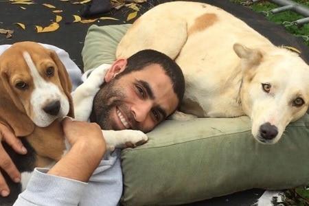 תמונה של צח מדריך אילוף כלבים ושני כלבים