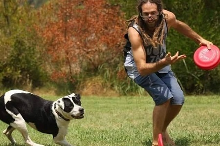משחק פריסבי עם כלב. ספורט כלבני בדשא