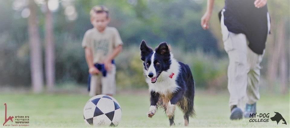 משפחה וכלב, משחק כדורגל