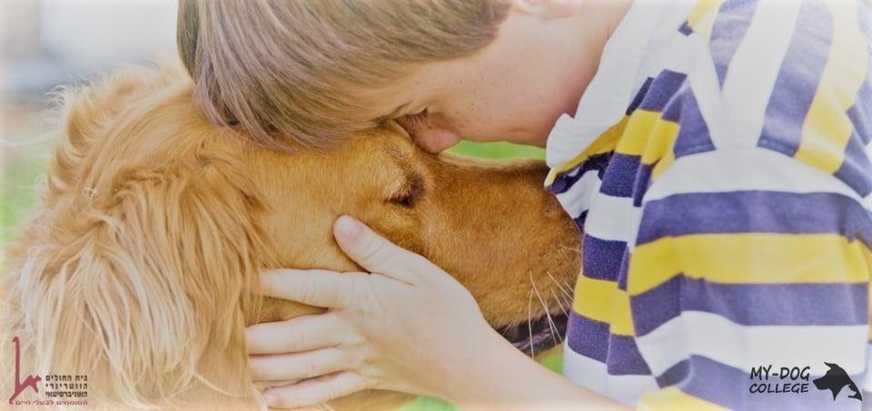 ילד וכלב מתקשרים, תרפיה בבעלי חיים